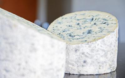 Fourme d'Ambert lait cru